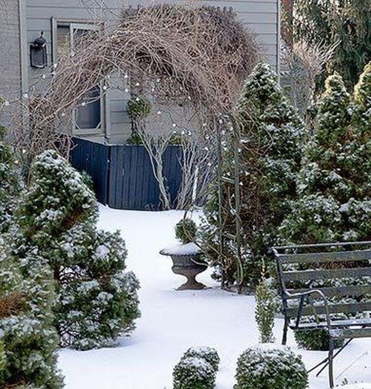Amazing Winter Garden Landscape 27
