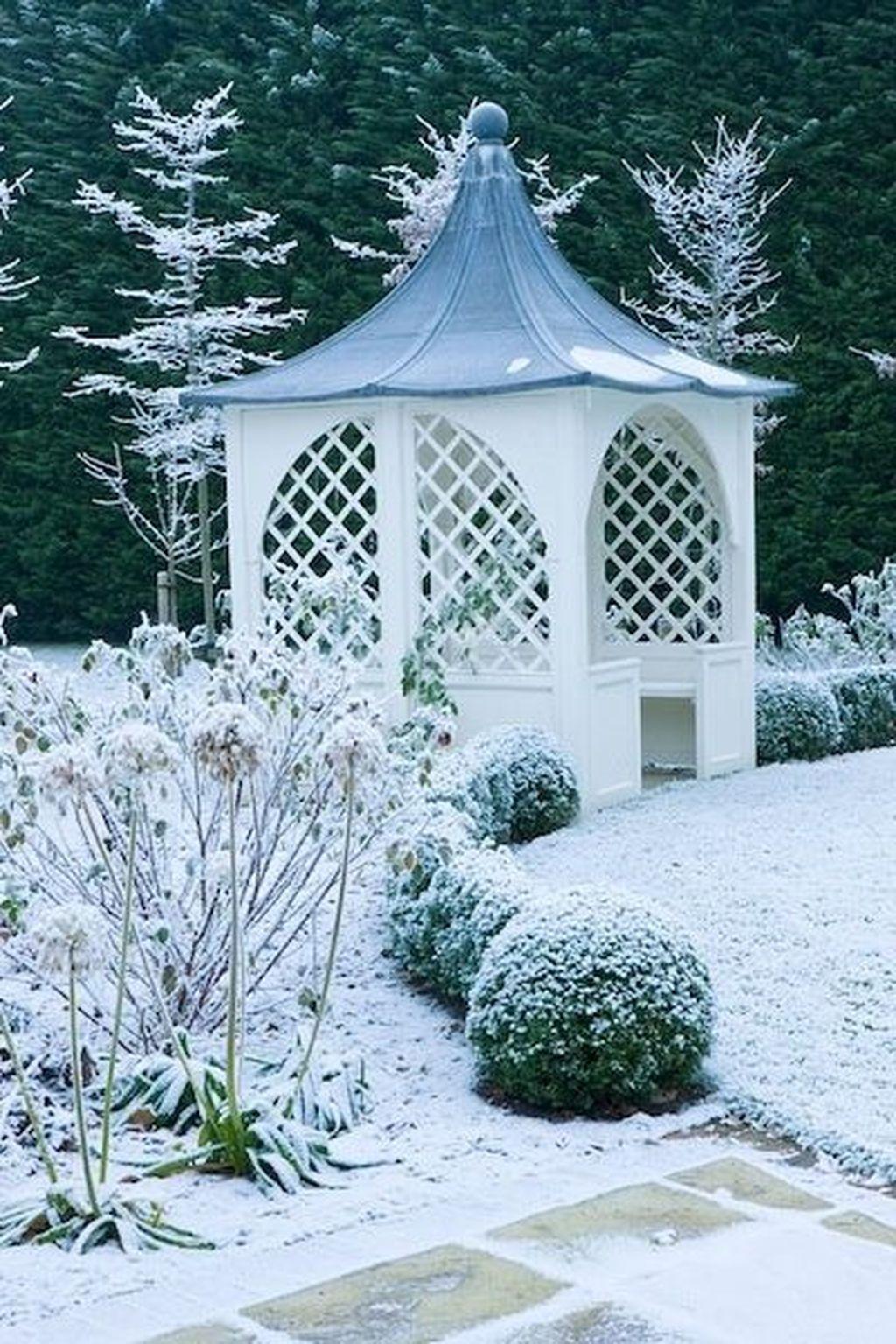 Amazing Winter Garden Landscape 35