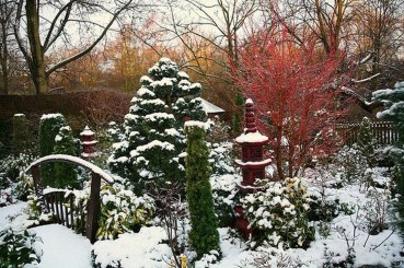 Amazing Winter Garden Landscape 36