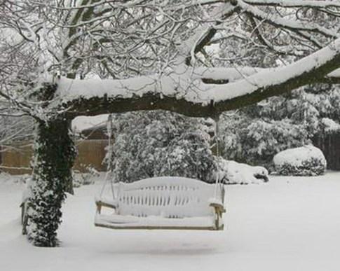 Amazing Winter Garden Landscape 38