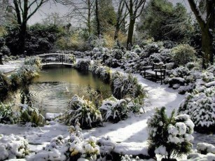 Amazing Winter Garden Landscape 44
