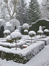Amazing Winter Garden Landscape 46