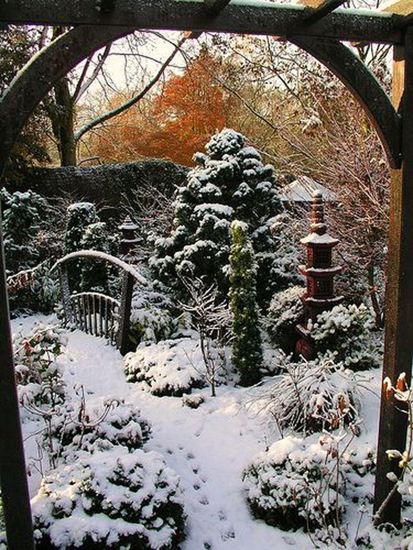 Amazing Winter Garden Landscape 48