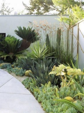 Backyard Landscaping Ideas With Minimum Budget 15