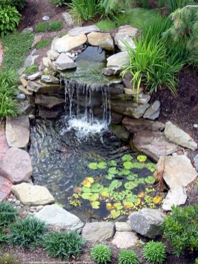 Backyard Landscaping Ideas With Minimum Budget 17