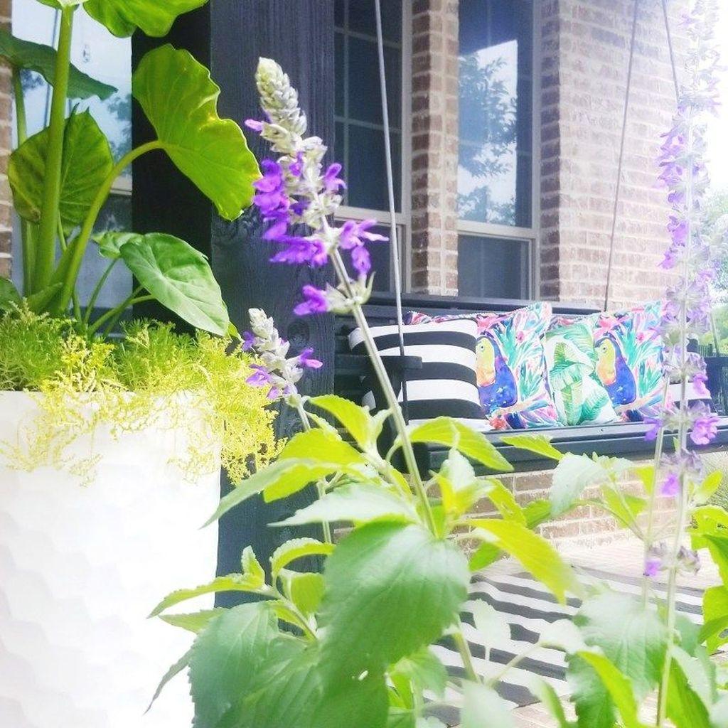 Beautiful Summer Planters Ideas For Front Door Decor 17