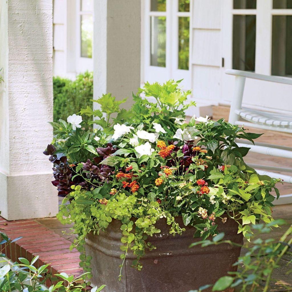 Beautiful Summer Planters Ideas For Front Door Decor 20