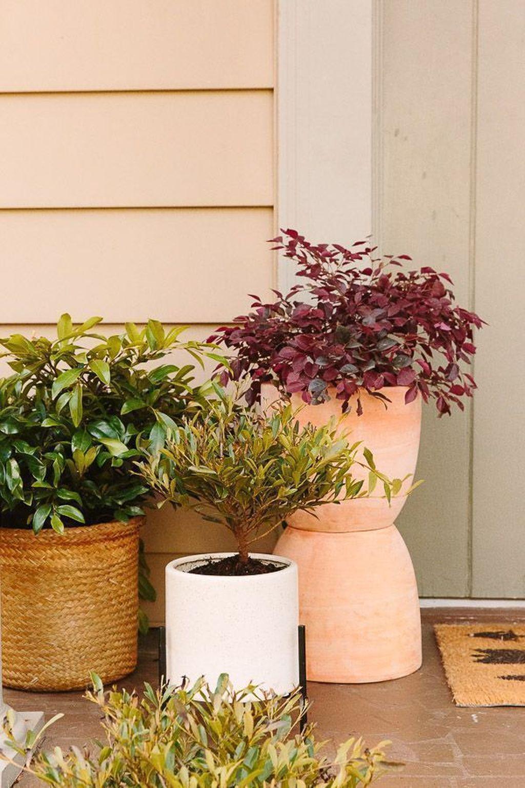 Beautiful Summer Planters Ideas For Front Door Decor 28