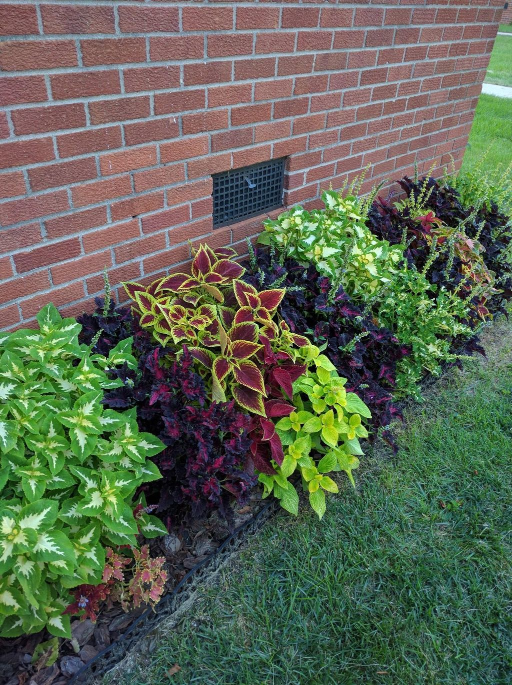 Lovely Flower Beds Design Ideas In Front Of House 21