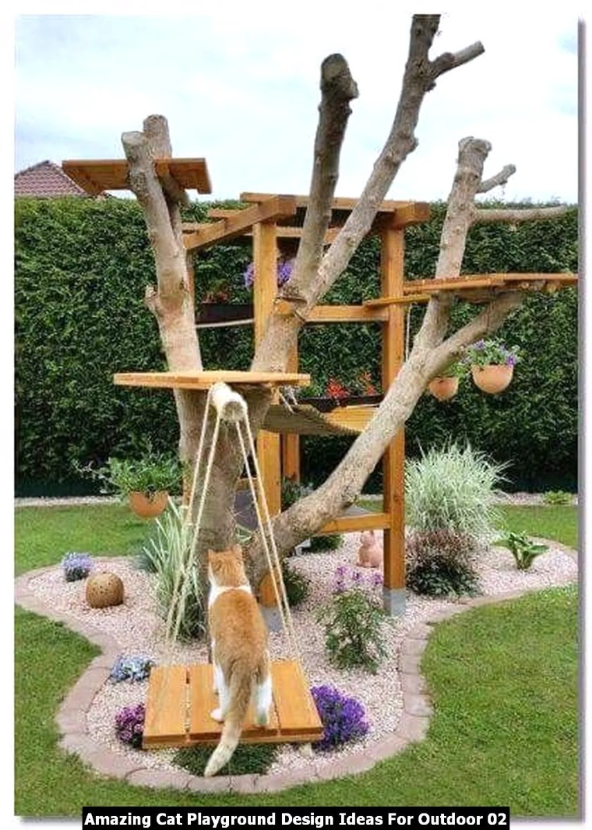 Amazing Cat Playground Design Ideas For Outdoor 02