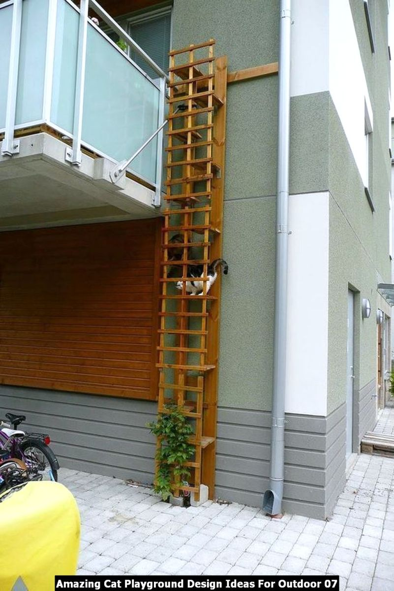Amazing Cat Playground Design Ideas For Outdoor 07