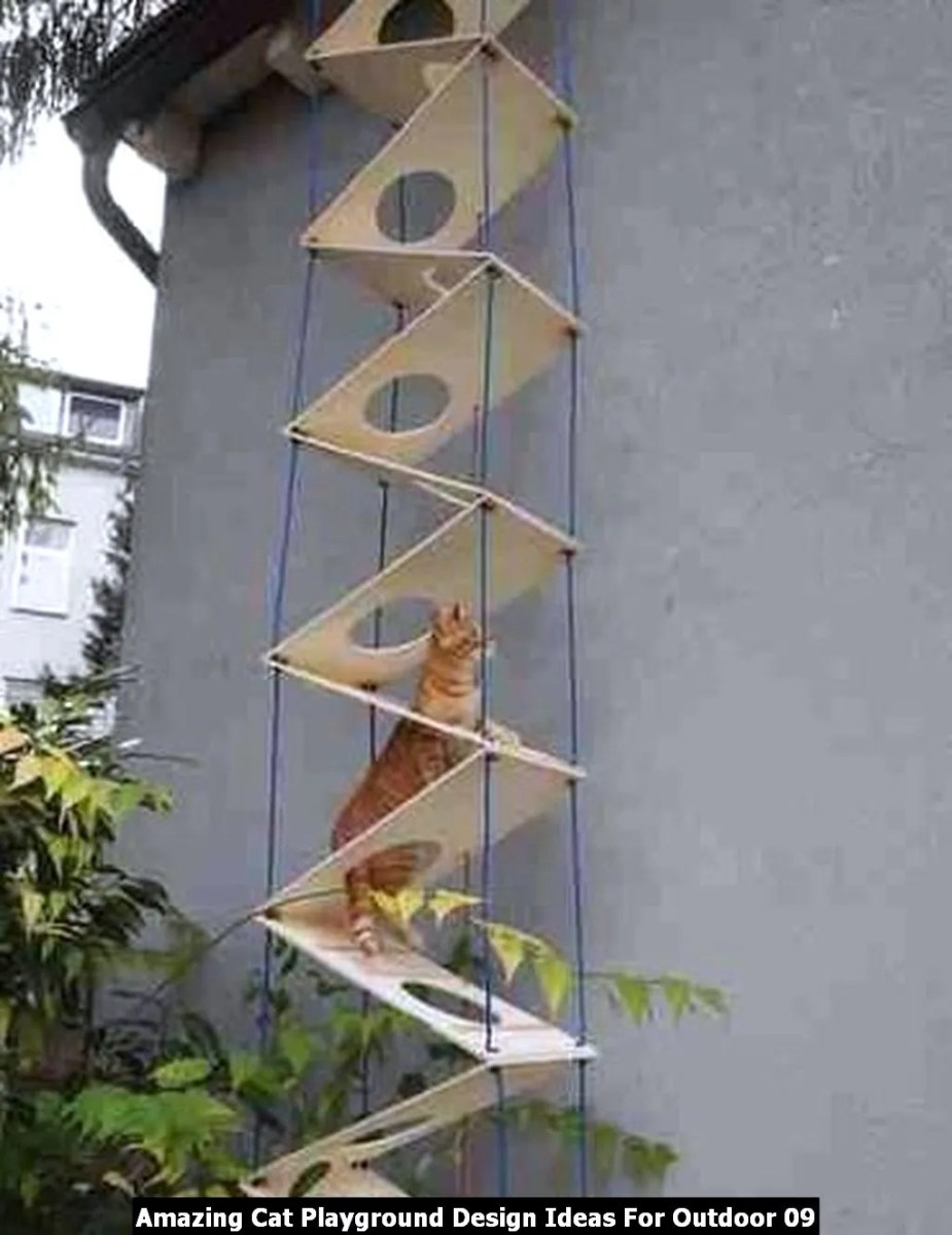 Amazing Cat Playground Design Ideas For Outdoor 09