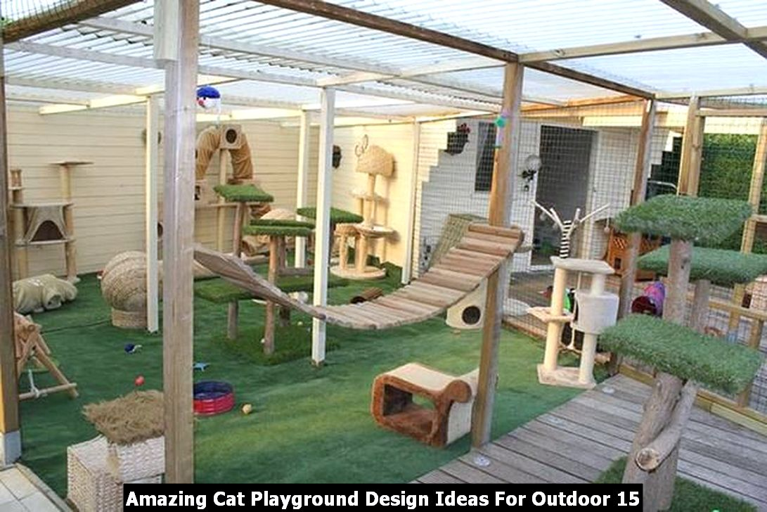 Amazing Cat Playground Design Ideas For Outdoor 15