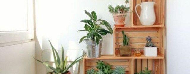 Simple Home Decor Ideas