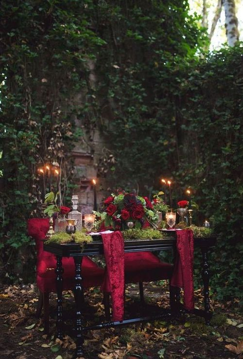 a romantic dinner in the forest