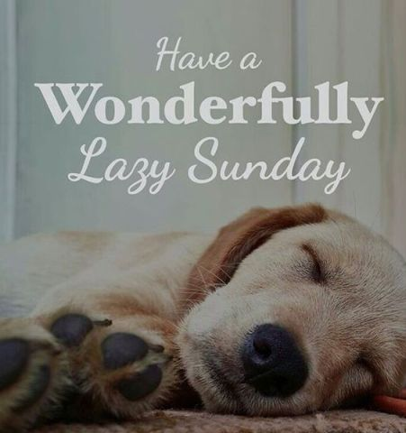 Image result for happy sunday