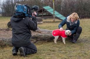 Tierisch tierisch besucht Tierheim am Lutherstein
