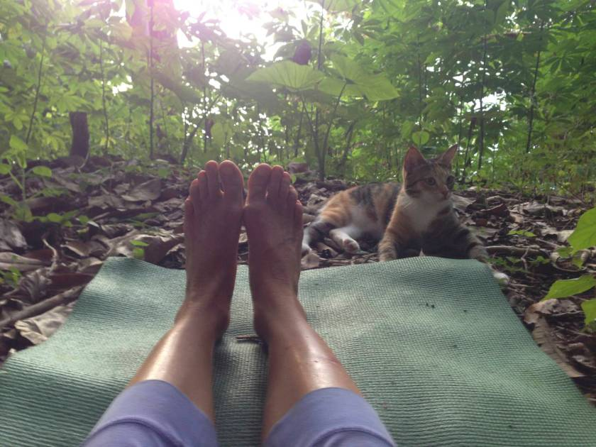 Afternoons in the mountains for yoga and tree climbing...