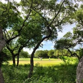 Hyatt Hill Country's Nature Trail