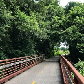 Anything But Swampy on the Swamp Rabbit Trail