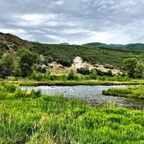 Stroll Along the Provo River