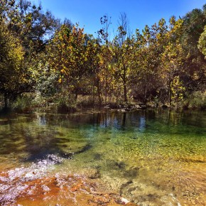 Hiking Spicewood Springs in Colorado Bend State Park