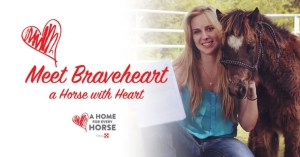 Braveheart - Adoption
