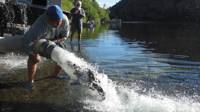 CDFW to Release 10,000 Pounds of Trout in Merced County Waters