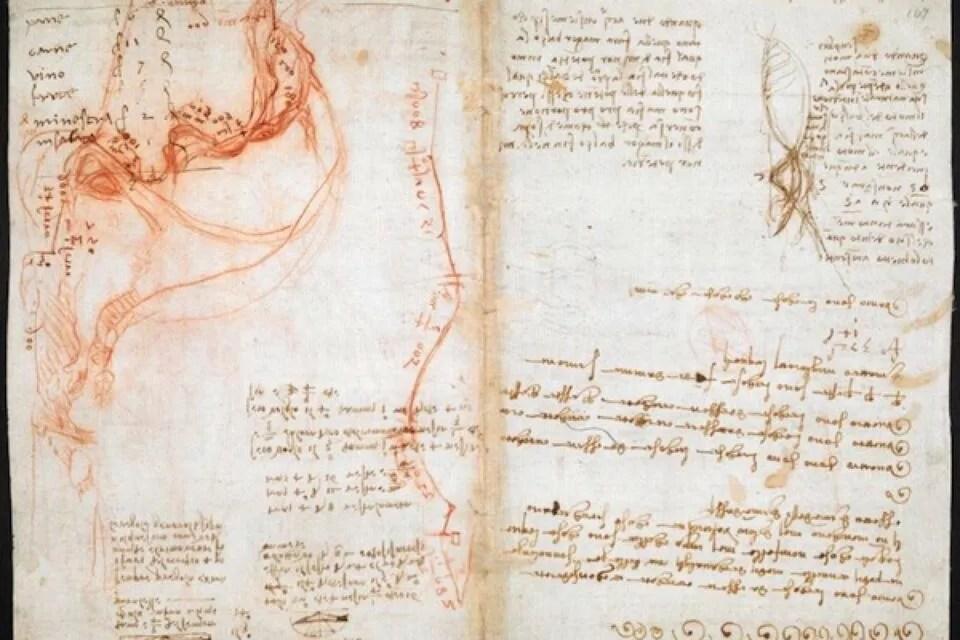 Leonardo da Vinci's Visionary Notebooks Now Online: Browse 570 Digitized Pages