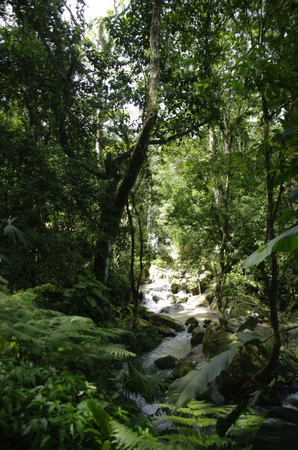 igp3042 - Kolumbia - Santa Marta (Park Tyrona, Minca), Villa de Leyva