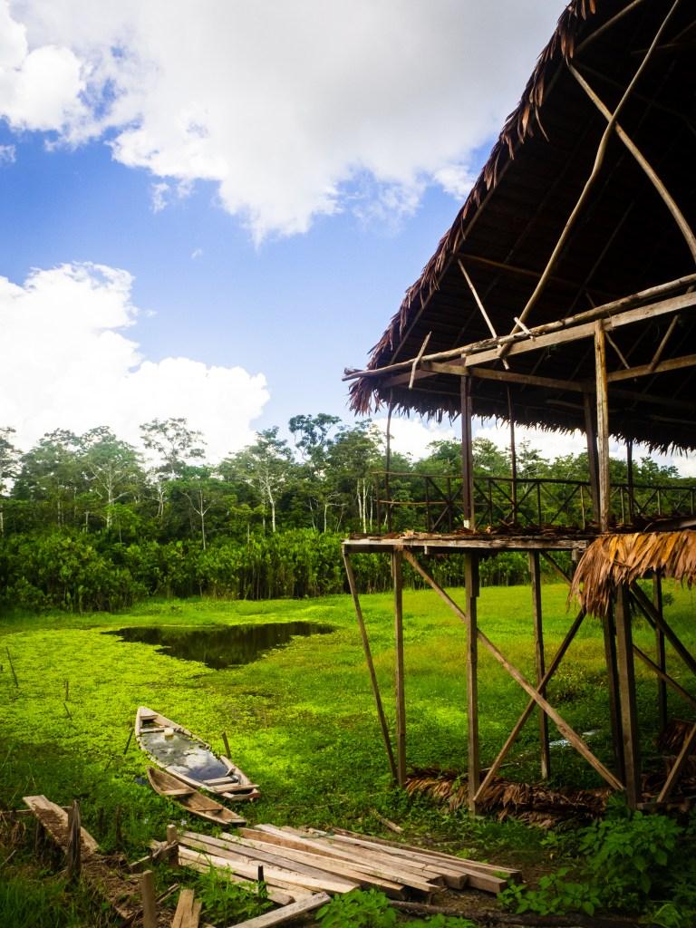 20181104  B040922 768x1024 - Amazońska dżungla w Peru