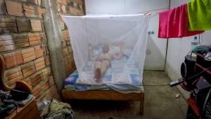 Iquitos mieszkanie2 300x169 - Iquitos - 4 dni w dżungli i 2 ceremonie ayahuasca