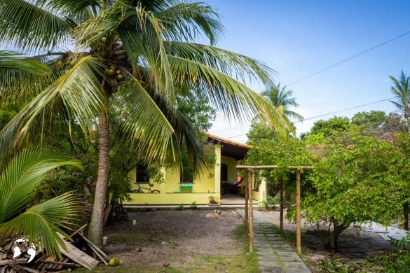 20181205  C051037 - Trustedhousesitting jako świetna opcja na wakacje