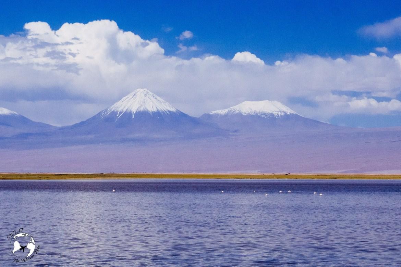 WhatsApp Image 2019 05 28 at 12.39.45 2 - Pustynia Atacama - gotowy plan i koszty podróży