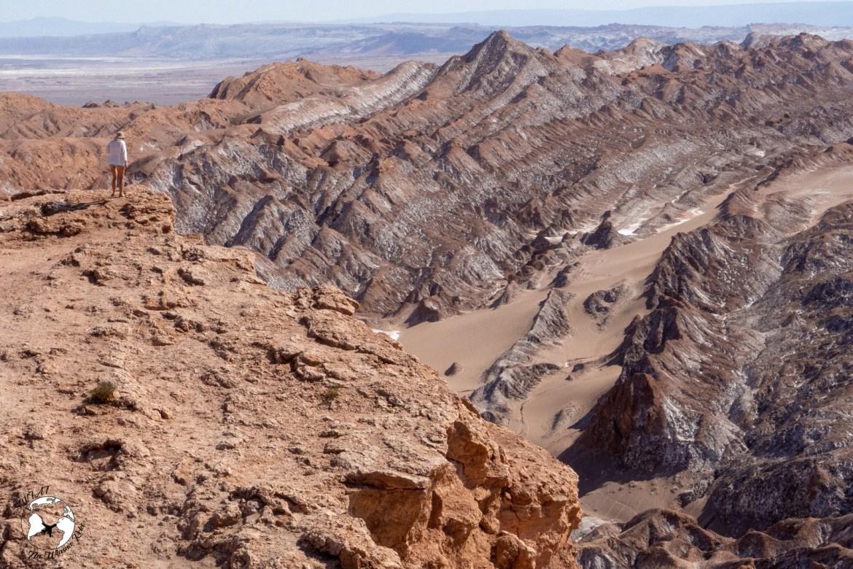 WhatsApp Image 2019 05 28 at 12.39.47 - Pustynia Atacama - gotowy plan i koszty podróży