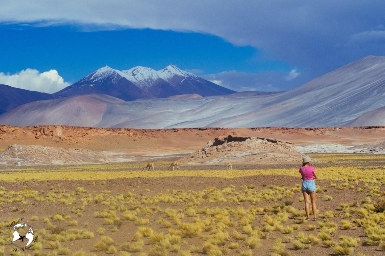 WhatsApp Image 2019 05 28 at 12.42.44 - Pustynia Atacama - gotowy plan i koszty podróży