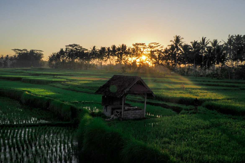 WhatsApp Image 2019 07 05 at 23.16.31 3 - Bali - gdzie pojechać, żeby się nie rozczarować?