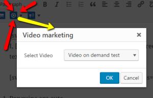 Video Marketing WordPress