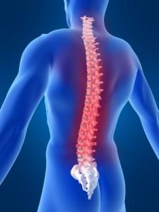 Swim Drill – Spine and Core