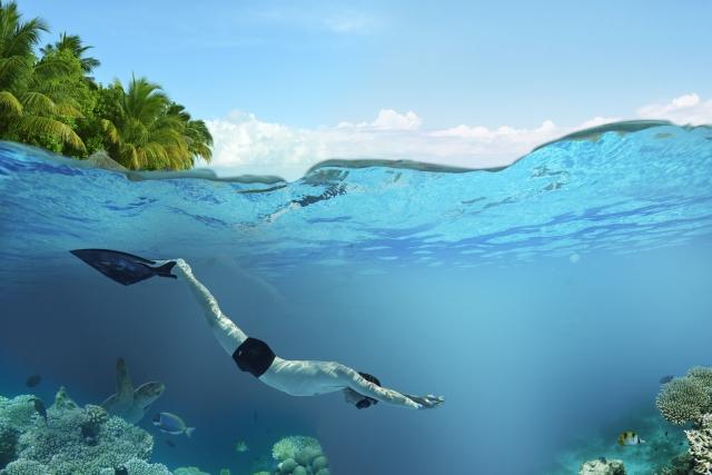 イルカみたいに泳ぐ