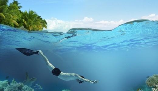 いかに速く泳ぐか?は魚やイルカをイメージして、というよりもなりきって泳ぐのが大事