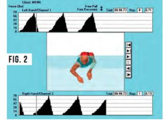swimming-technique-misconceptions