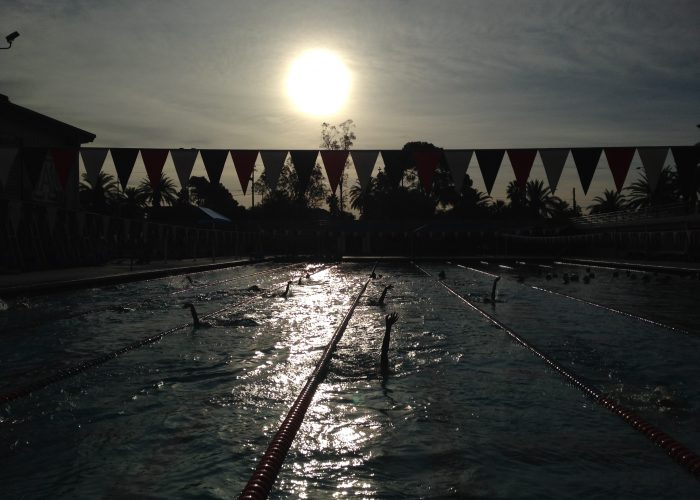 outside-pool-generic-backstroke-summer