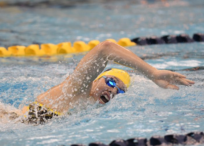 10/8/16 2016-15 Women's Swimming and Diving hosts Louisville. SDW 2016-17 Win 274-196 Session 2
