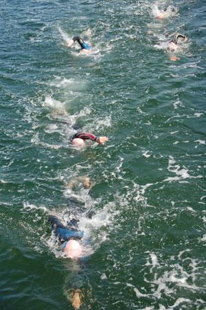Svømmere i våddragt der svømmer hen mod kameraet efter 5/første halvdel af 10 km ved Amager OW 2011
