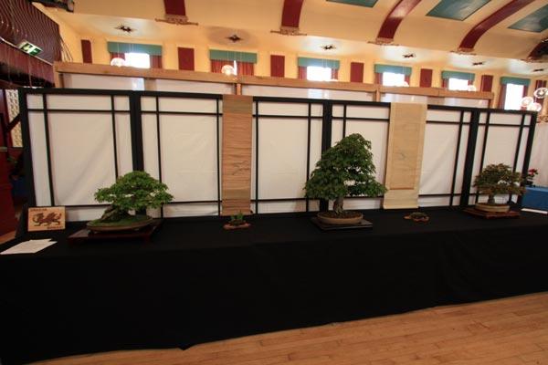 Dragon Bonsai Society Exmouth Show 2011