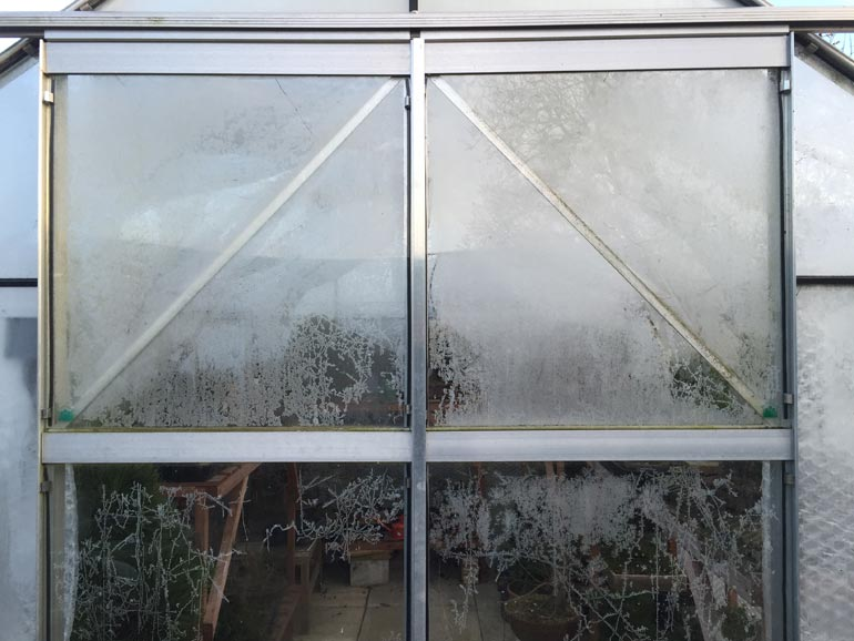 Cold greenhouse