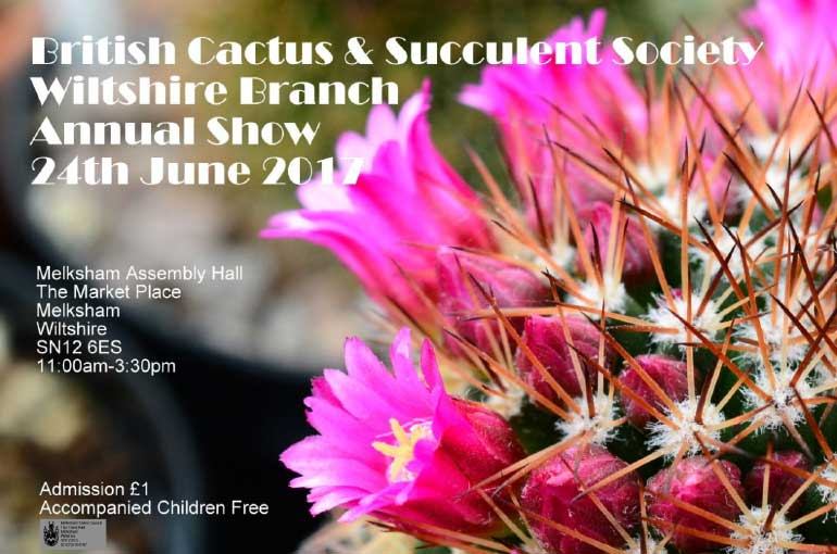 BCCS wiltshire show poster 2017