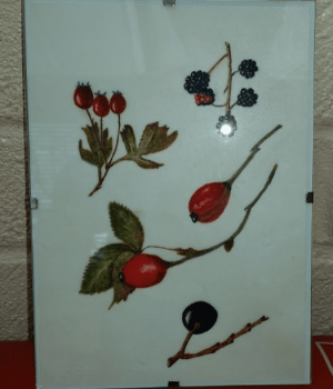 Berries painted on vellum
