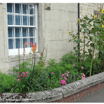 building and flower beds